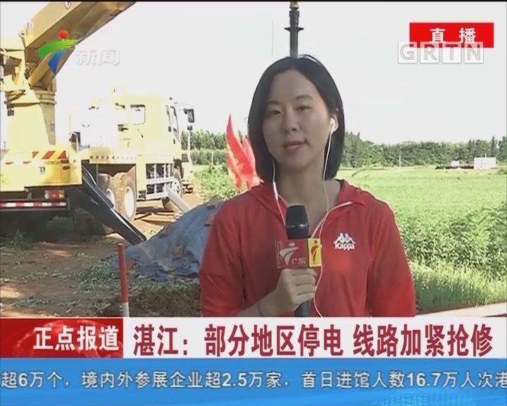 湛江:部分地区停电 线路加紧抢修