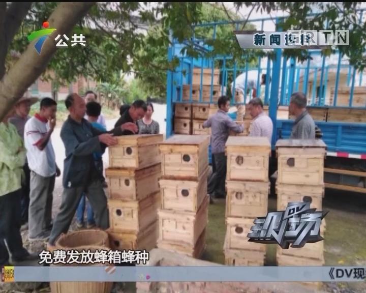 致富有道在广东:电商扶贫助农产品推广全国