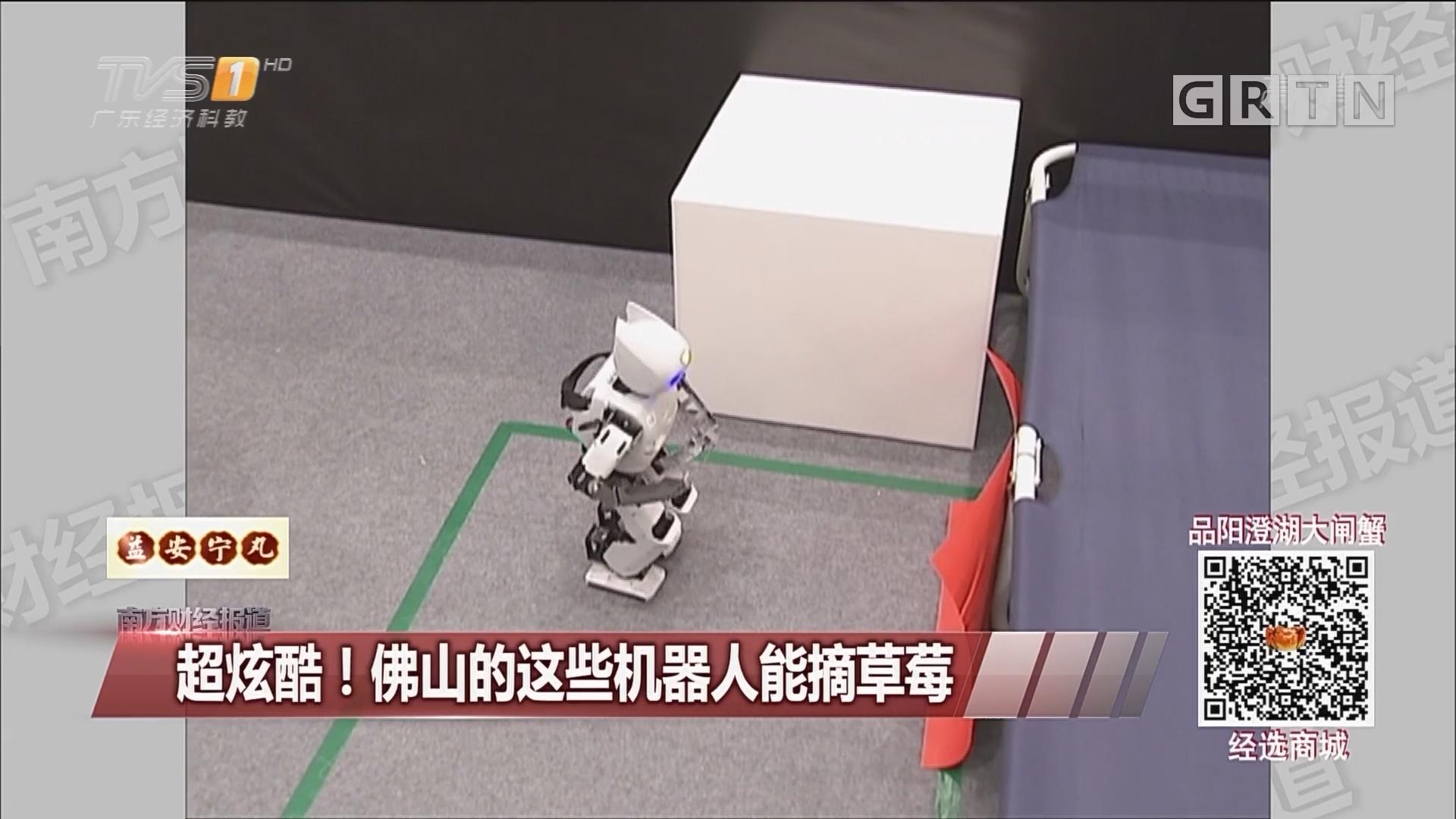 超炫酷!佛山的这些机器人能摘草莓