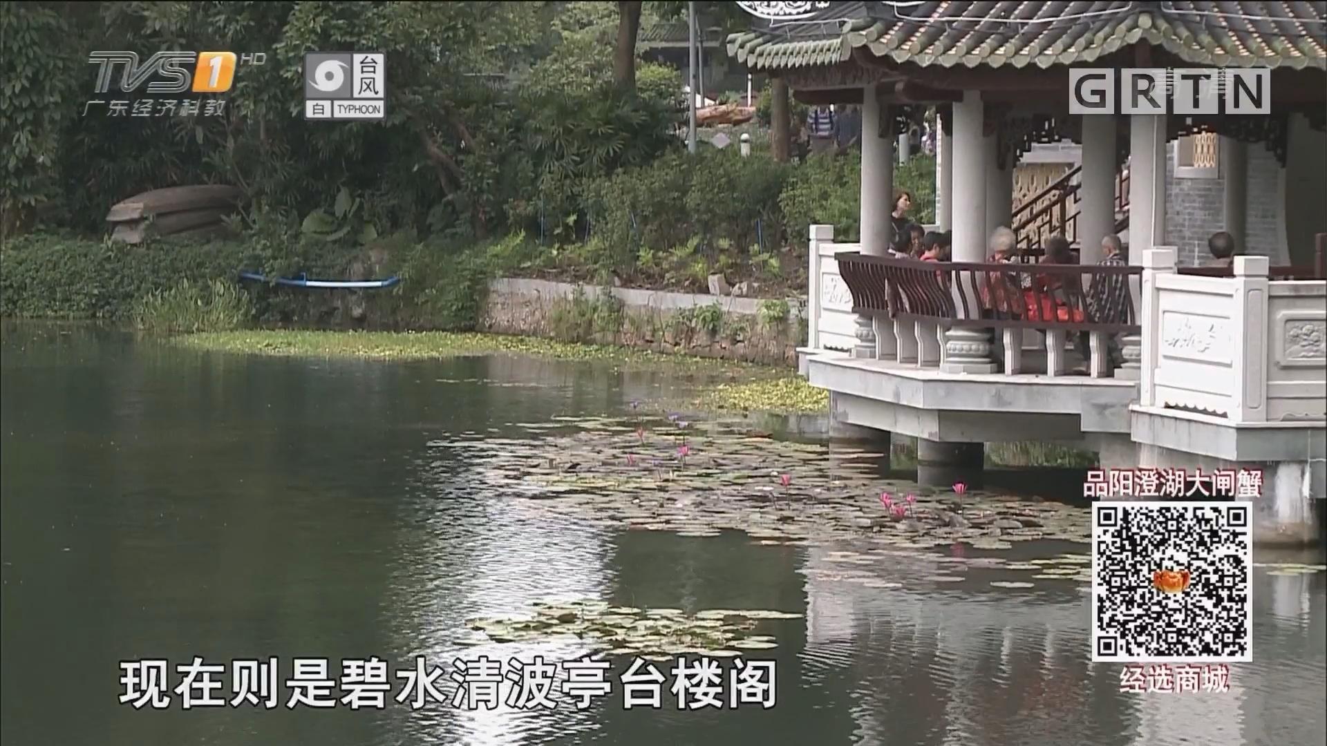 广州:荔湾湖清澈见底 生态改造初见成效