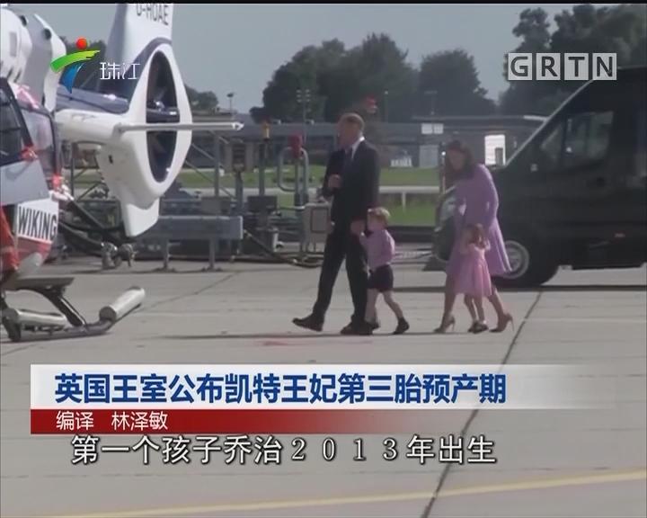 英国王室公布凯特王妃第三胎预产期