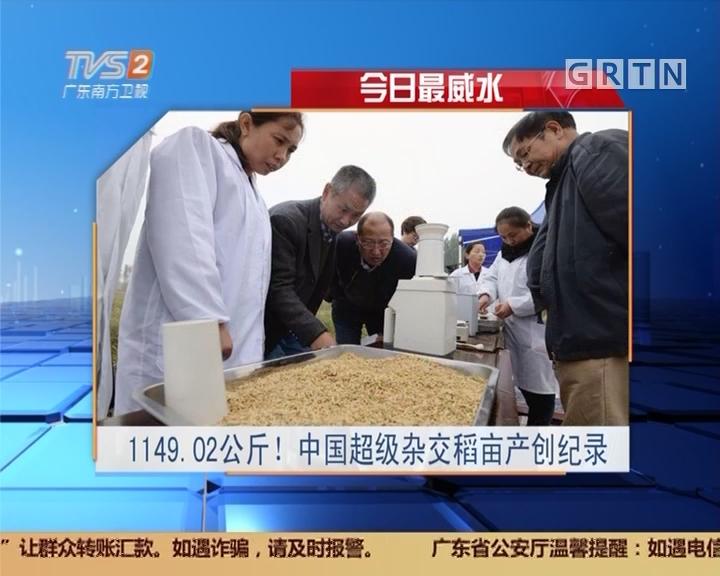 今日最威水:1149.02公斤!中国超级杂交稻亩产创纪录