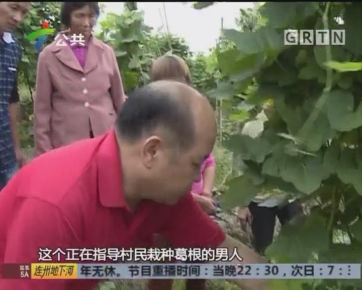 致富有道在广东:昔日丢荒田 今变致富地