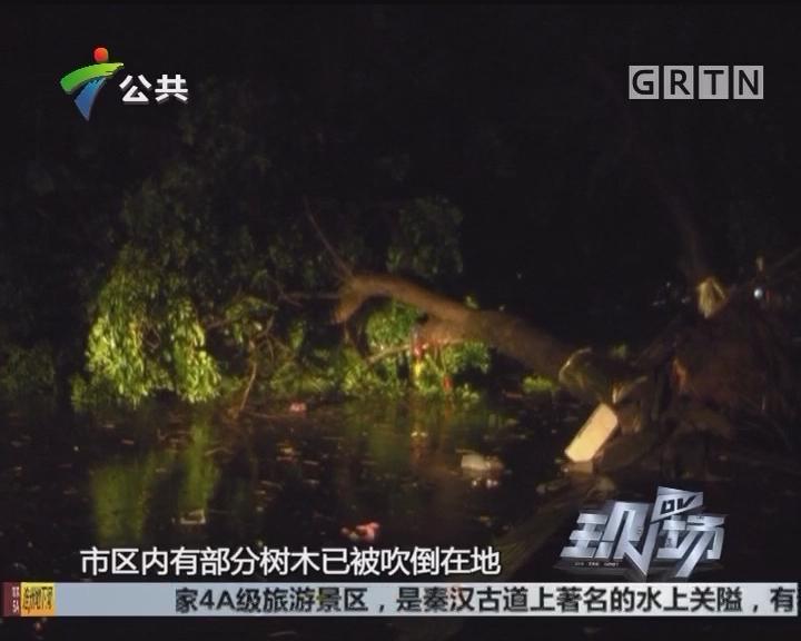 """湛江:台风""""卡努""""今晨登陆 风力已逐渐减弱"""