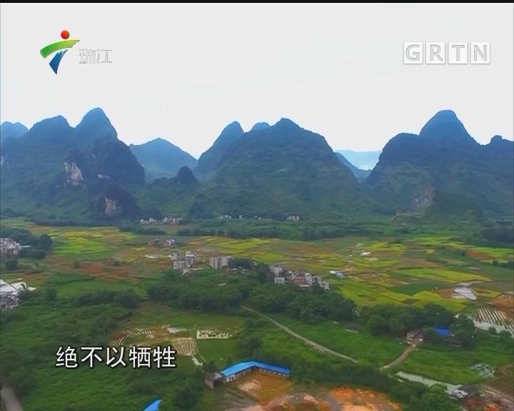 肇庆:加快建设广东面向大西南枢纽门户城市