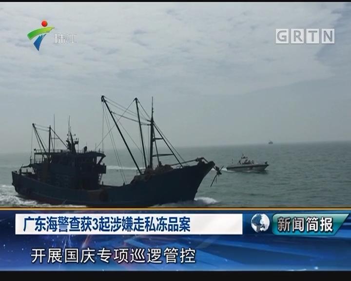 广东海警查获3起涉嫌走私冻品案