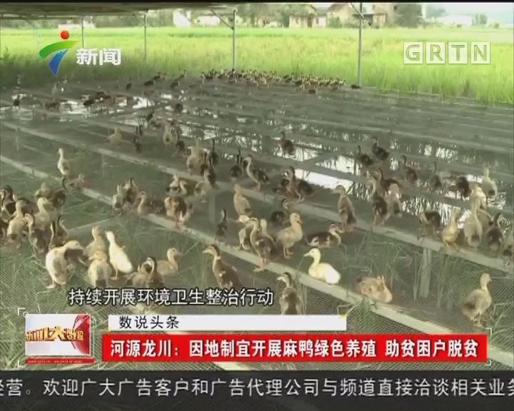 河源龙川:因地制宜开展麻鸭绿色养殖 助贫困户脱贫