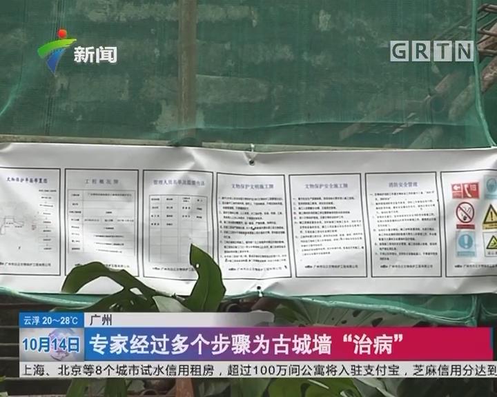 """广州:600岁古城墙""""生病了"""" 专家开出药方"""