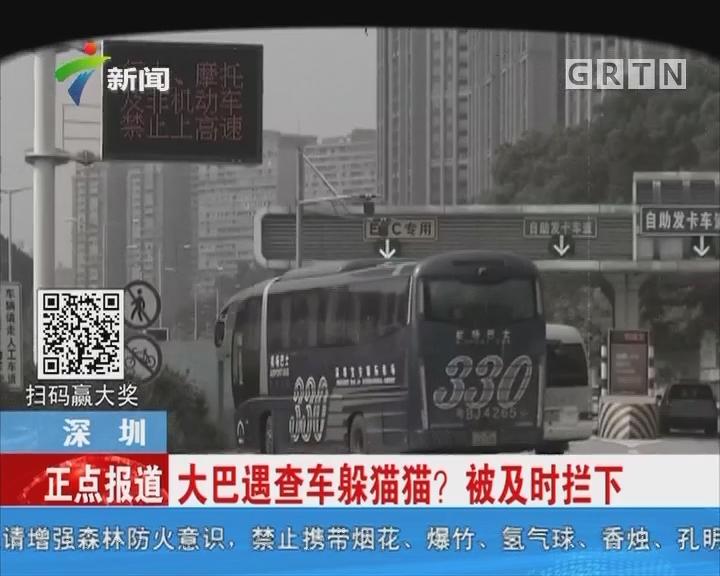 深圳:大巴遇查车躲猫猫?被及时拦下