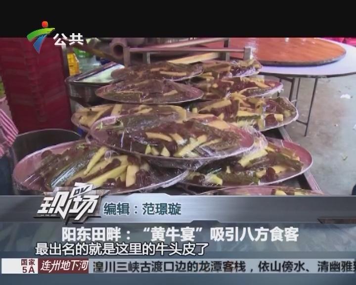 """阳东田畔:""""黄牛宴""""吸引八方食客"""
