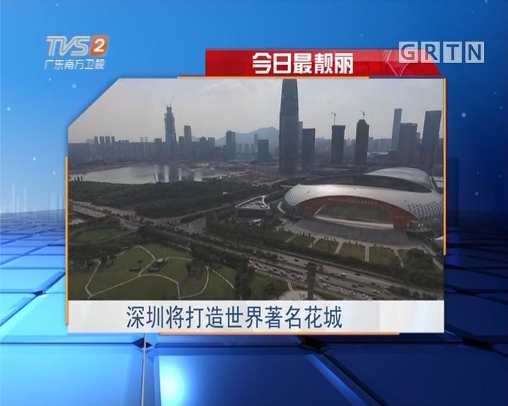 今日最靓丽:深圳将打造世界著名花城