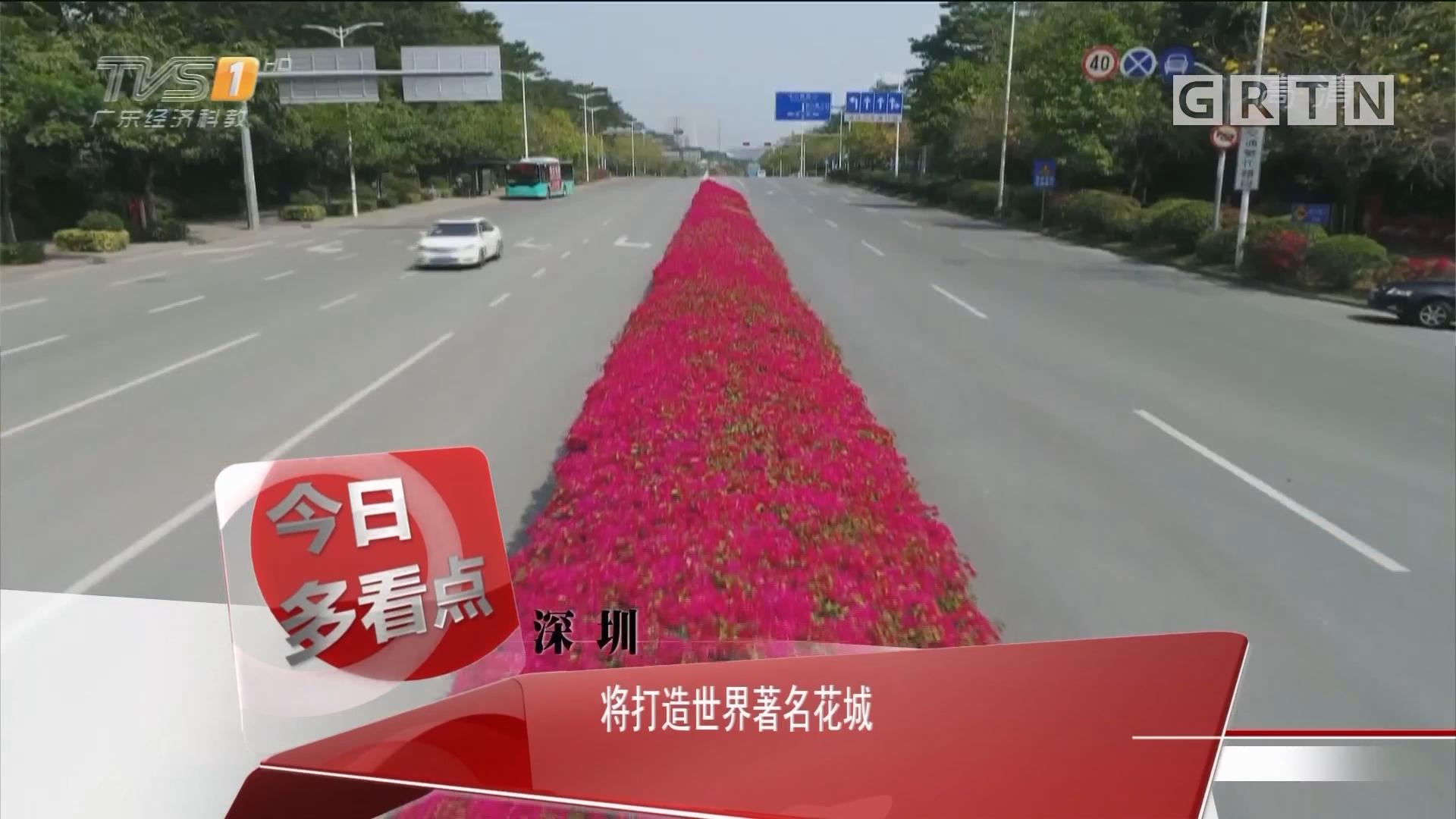 深圳:将打造世界著名花城