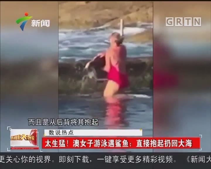 太生猛!澳女子游泳遇鲨鱼:直接抱起扔回大海