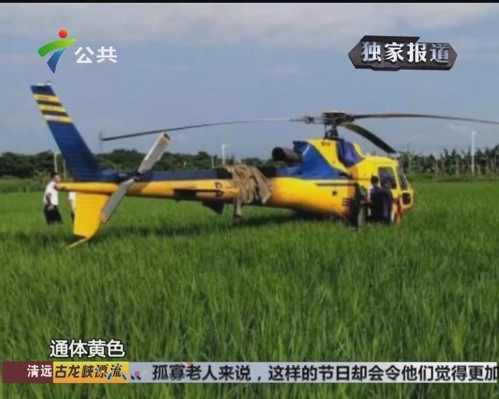 惠州:田间突现直升机 引村民围观
