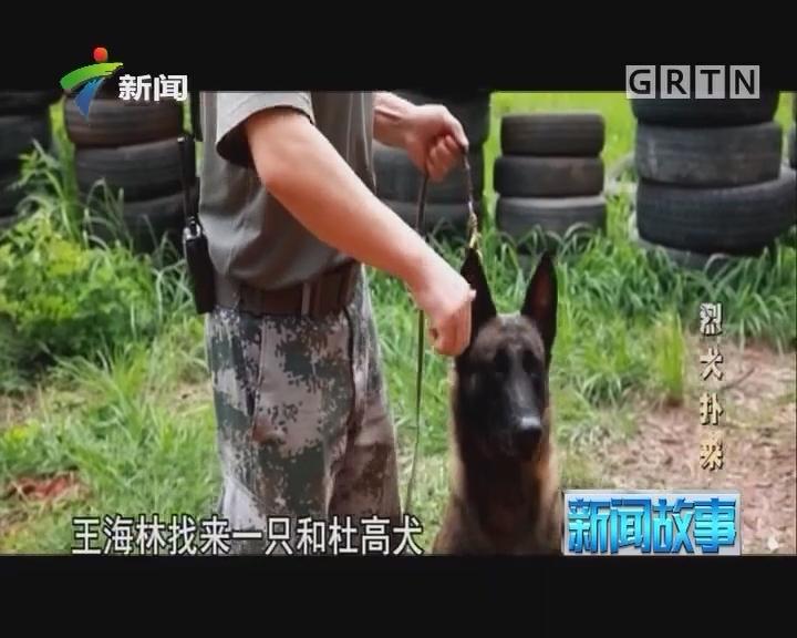 [2017-10-30]新闻故事:烈犬扑来