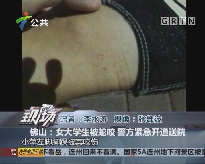 佛山:女大学生被蛇咬 警方紧急开道送院
