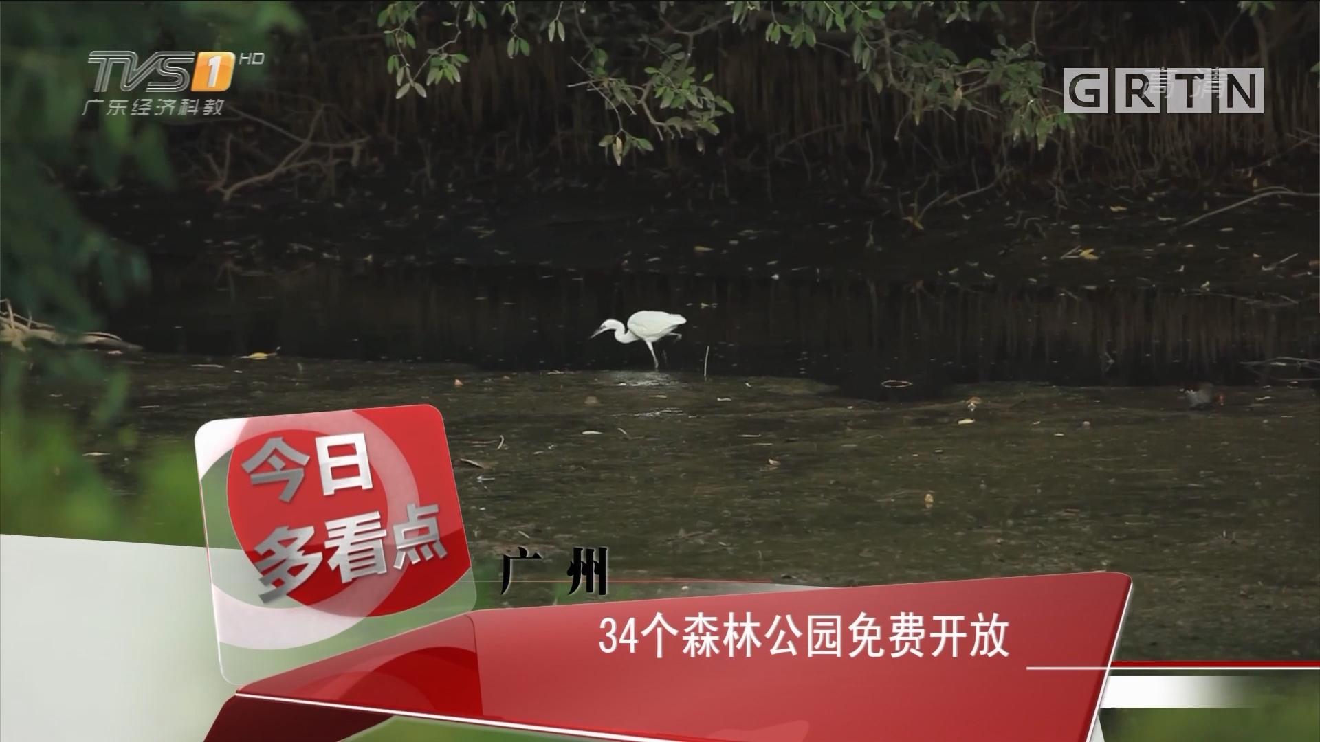 广州:34个森林公园免费开放