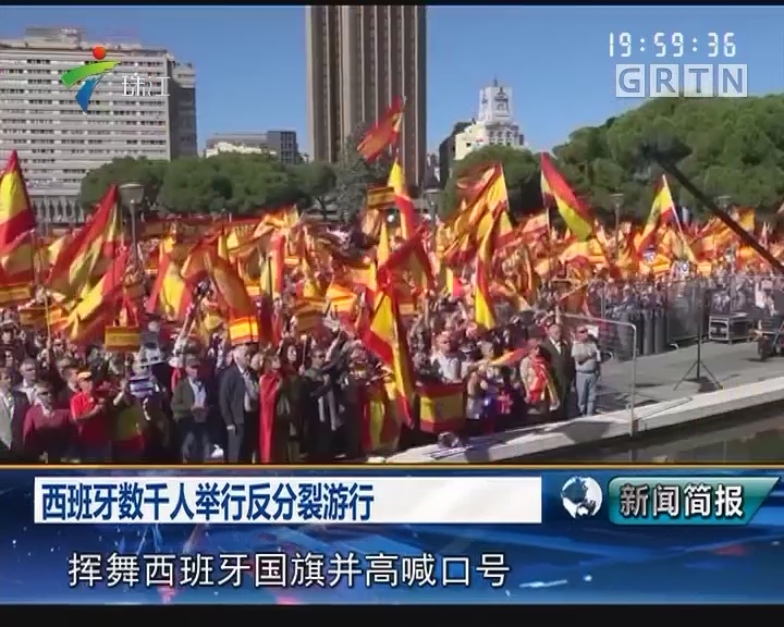 西班牙数千人举行反分裂游行