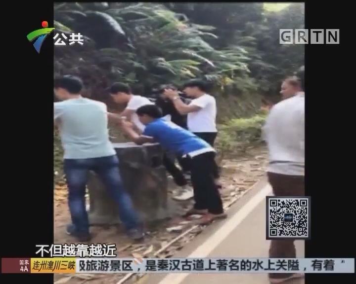从化:公园有蛇出没 街坊围观拍摄