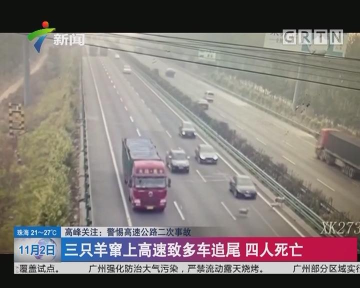 高峰关注:警惕高速公路二次事故 三只羊窜上高速致多车追尾 四人死亡
