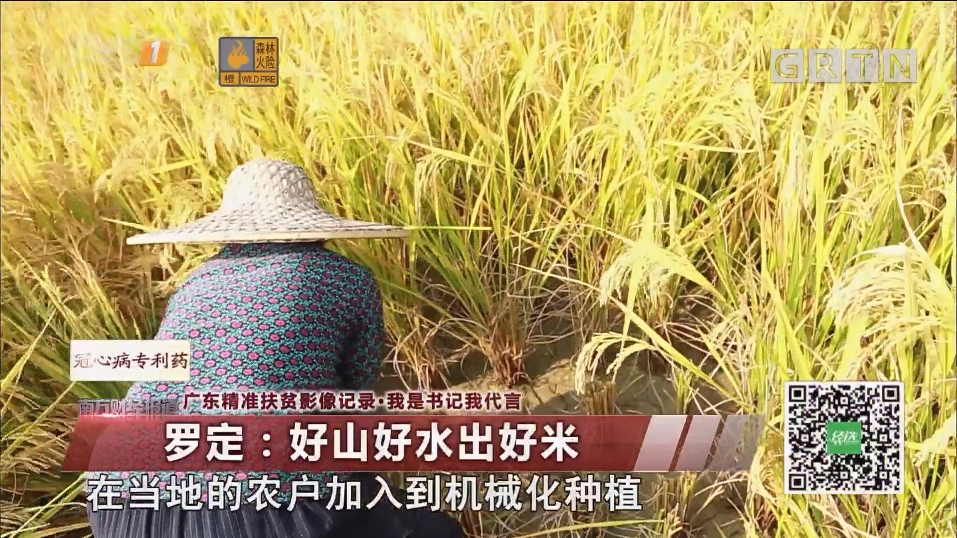 广东精准扶贫影像记录·我是书记我代言 罗定:好山好水出好米(二)