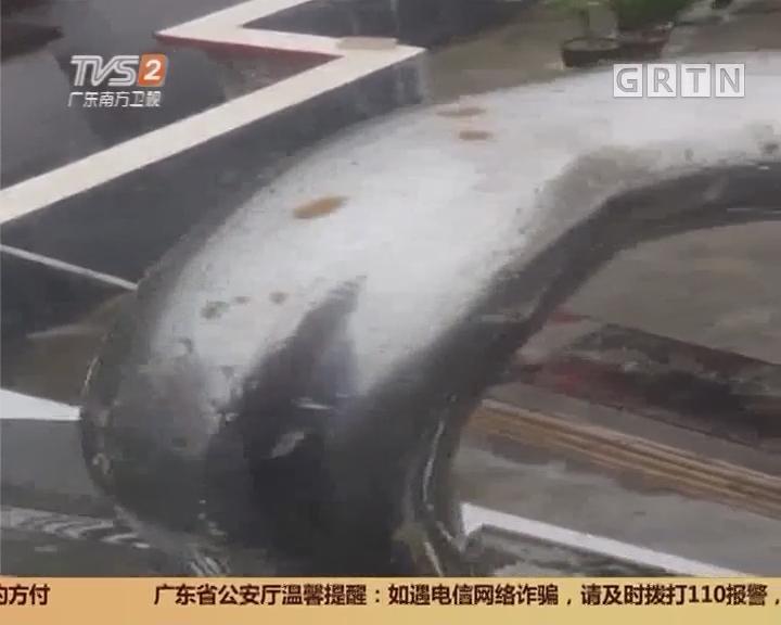 广州白云区:天降黄色异物 莫非来自飞机厕所?