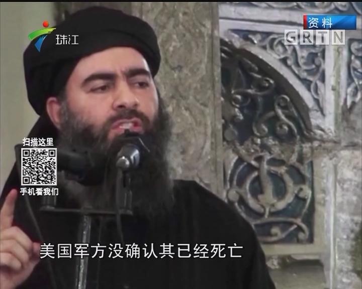 """""""伊斯兰国""""领袖巴格达迪或藏身阿布卡迈勒"""