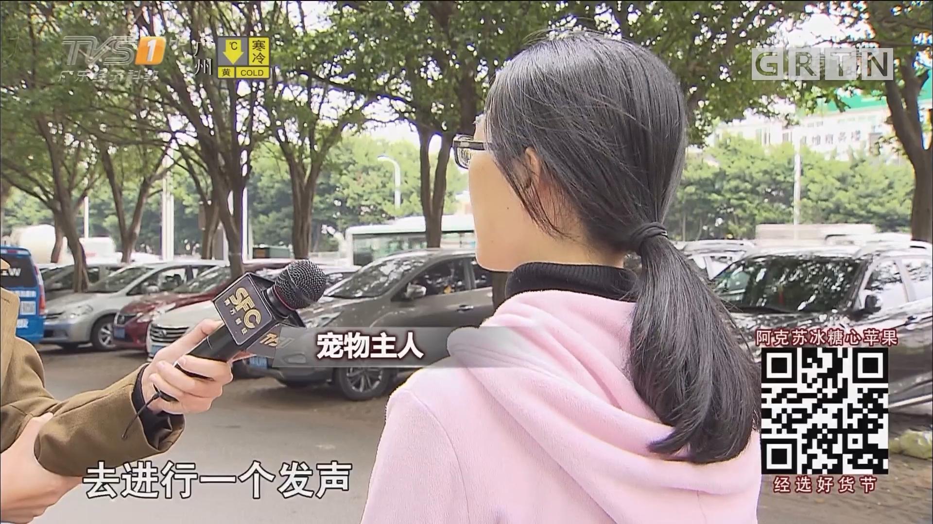 广州:小区疑遭投毒 数十只猫狗惨遭毒手