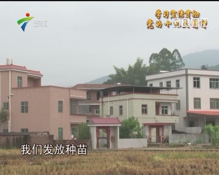 紫金腊石村:三清三拆 村容三月换新颜
