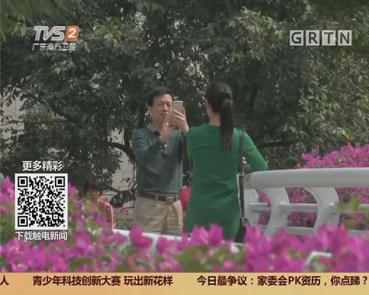 广州:秋天到羊城赏花 花带总长三百公里