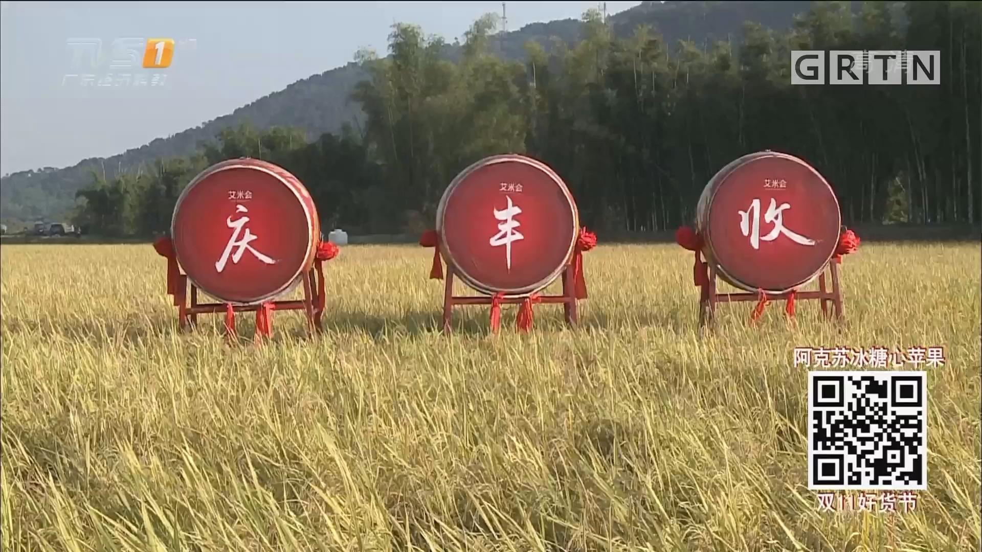 秋收了!广州从化创新农业生态链有收效