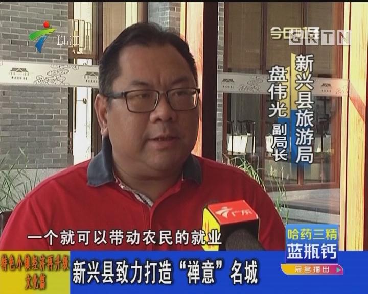 """特色小镇经济再升级文化篇:新兴县致力打造""""禅意""""名城"""