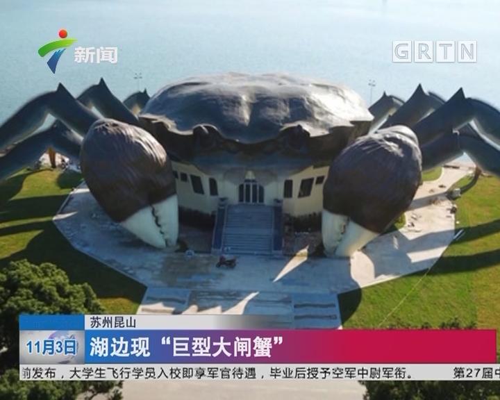 """苏州昆山:湖边现""""巨型大闸蟹"""""""