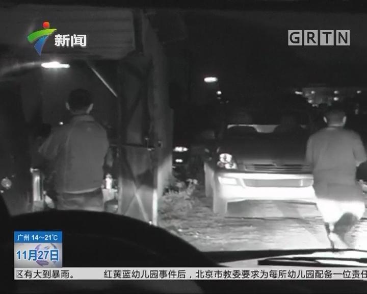 高峰调查 佛山:地下私宰点生意火爆