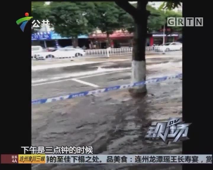 河源:大水浸泡街道 交通一度混乱