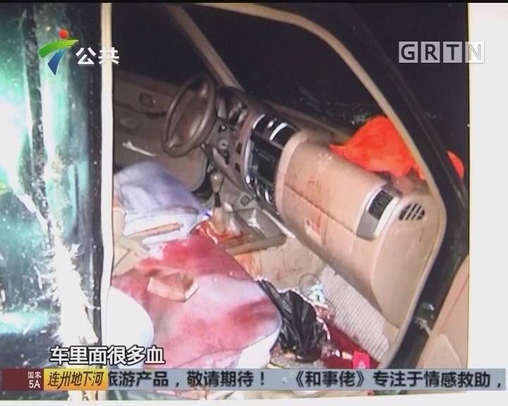 珠海:皮卡车夜晚撞树 副驾乘客离奇身亡