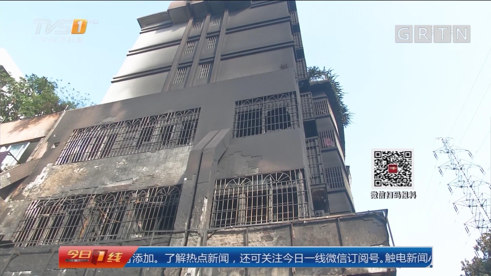 江门蓬江:汽修店凌晨起火 忠狗助街坊逃生