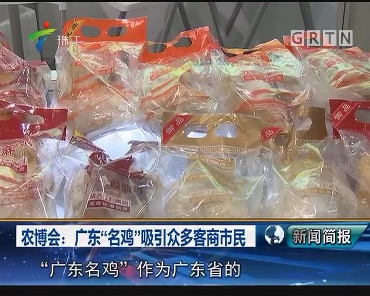 """农博会:广东""""名鸡""""吸引众多客商市民"""