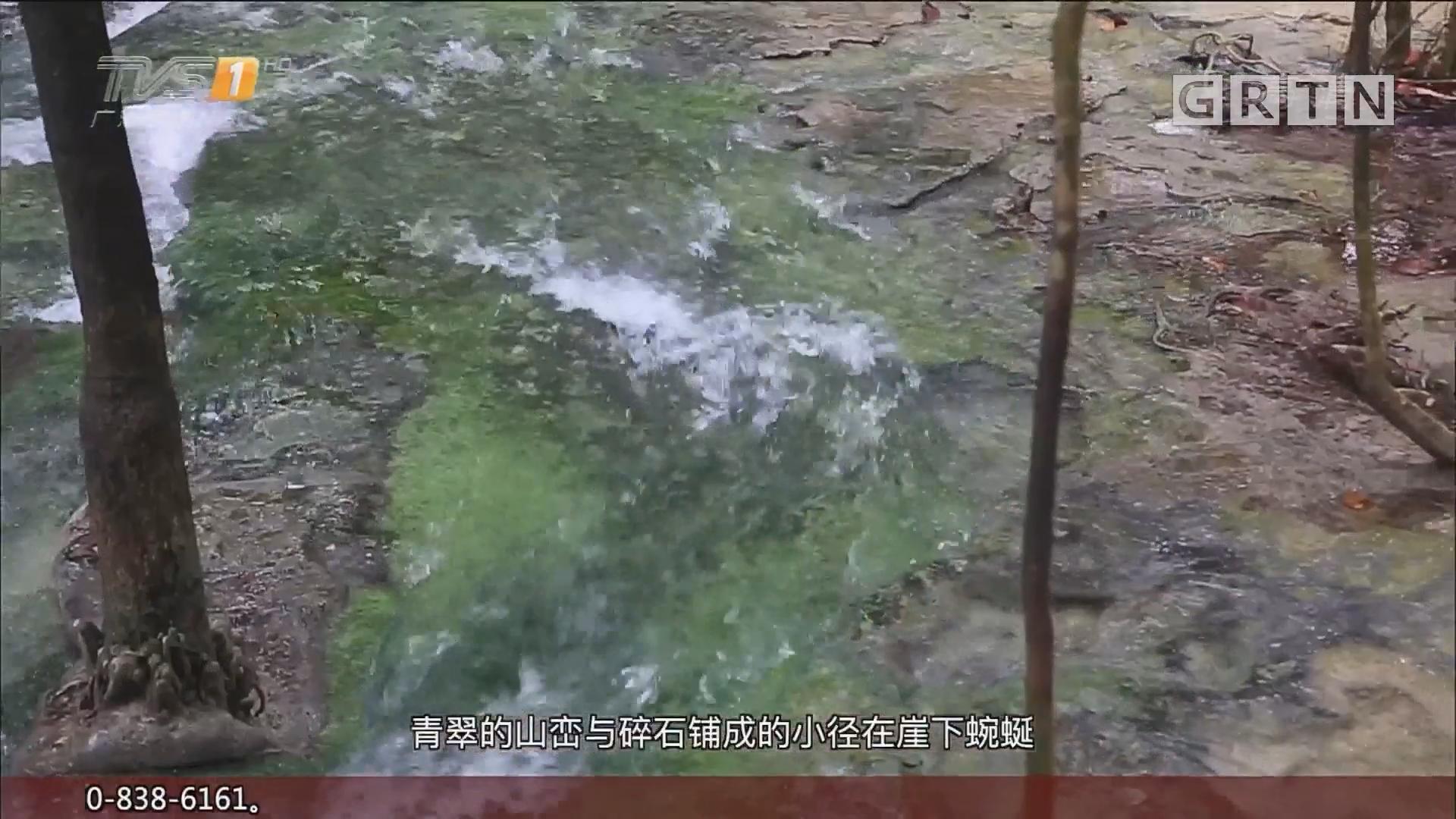泰国甲米——翡翠池