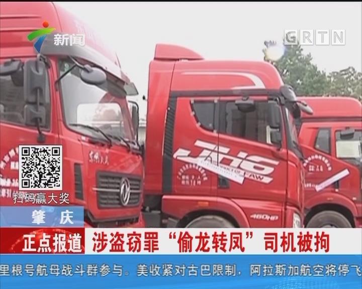 肇庆:明撒石粉暗偷钢筋 8辆车被查扣