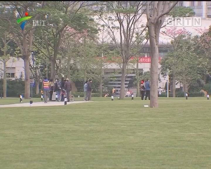 广州二沙岛艺术公园今日开放