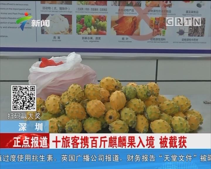深圳:十旅客携百斤麒麟果入境 被截获