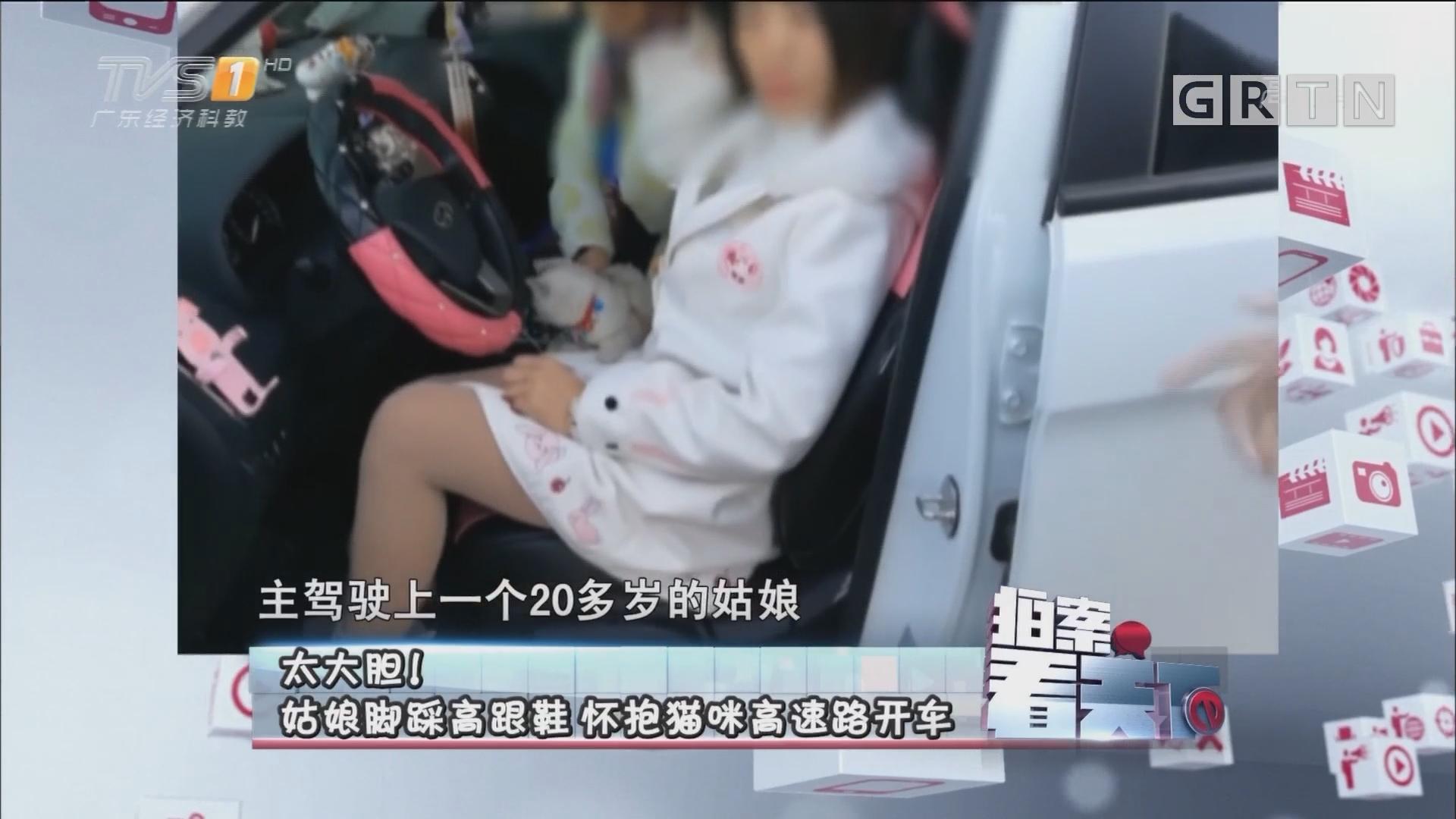 [HD][2017-11-14]拍案看天下:太大胆!姑娘脚踩高跟鞋 怀抱猫咪高速路开车