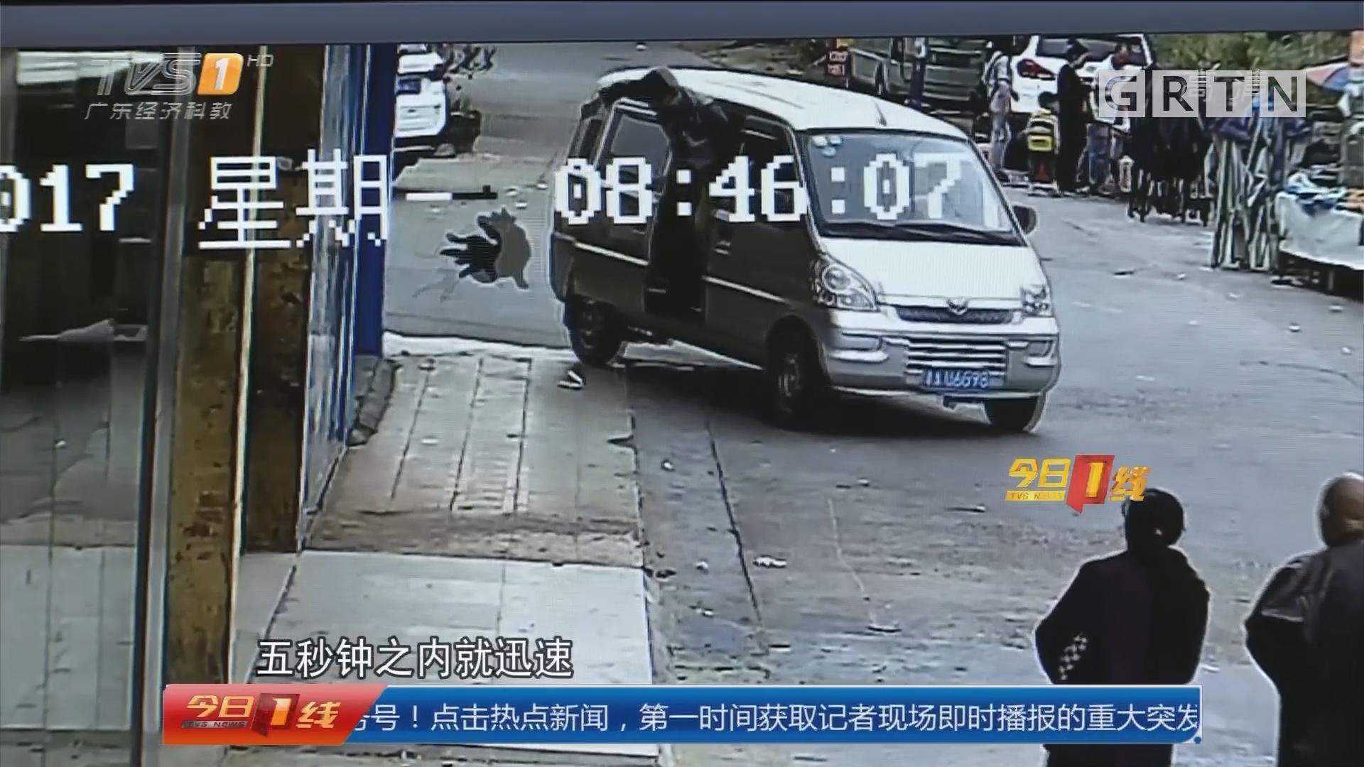 广州花都警方:打掉盗贩狗团伙 救出数十只狗