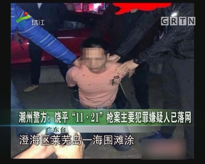 """潮州警方:饶平""""11·21""""枪案主要犯罪嫌疑人已落网"""