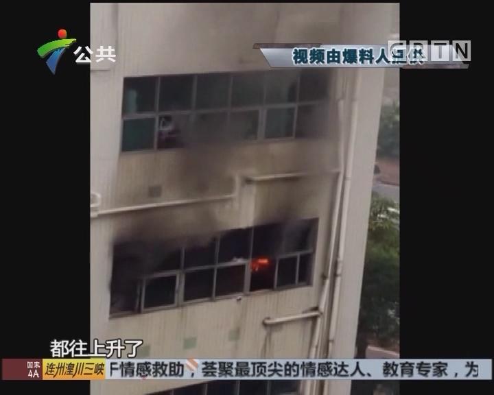 东莞:工业园食堂起火 幸无人受伤