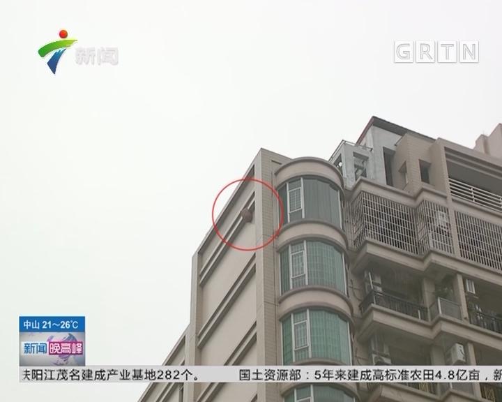 广州花都:40米高楼外挂蜂巢 住户生活受扰