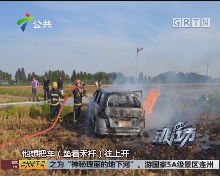 中山:车主为看秋收美景 小车陷入田地着火