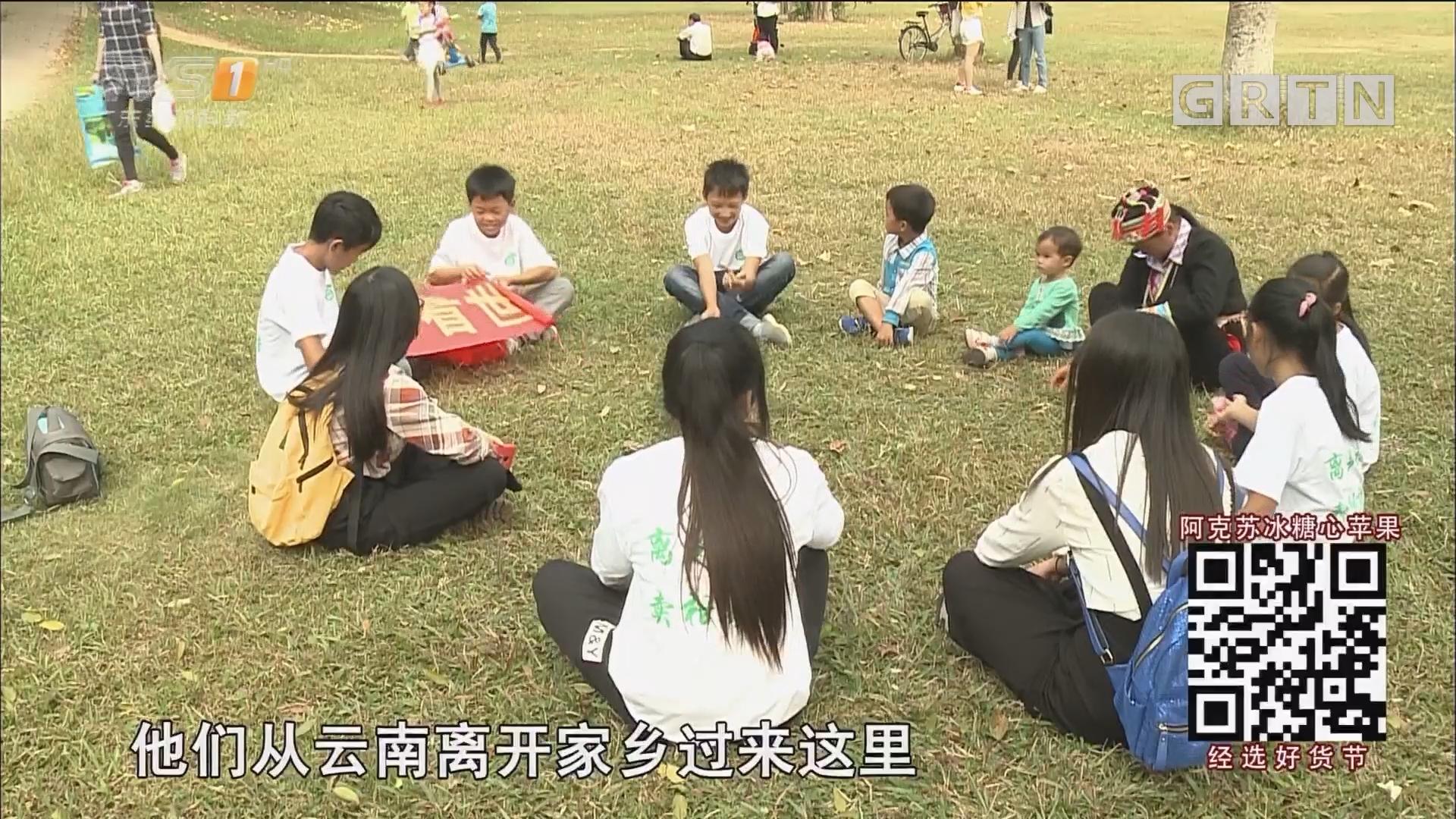 从云南集体到广东种果树 瑶族同胞们的柑桔梦