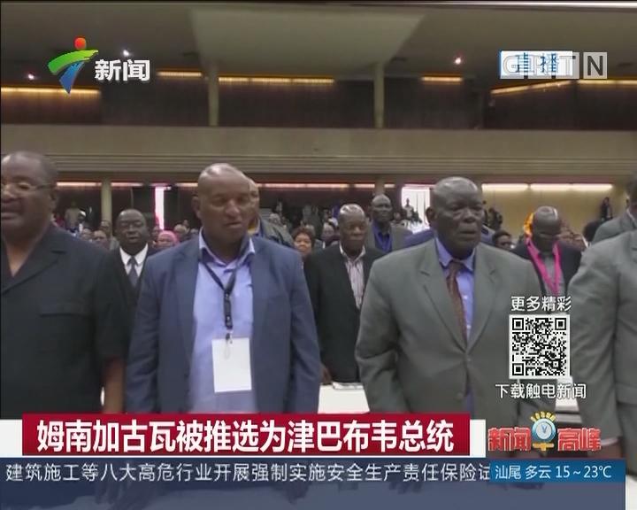姆南加古瓦被推选为津巴布韦总统